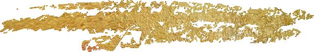 pfitscher Symbol Gold